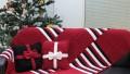 Kırmızı Renkli Fiyonklu Kırlent ve Battaniye Modeli
